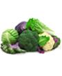 вегетариански