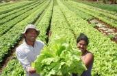 Dia Mundial da Alimentação - Nutricionista 24Kitchen