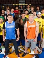 The Ultimate Fighter 14