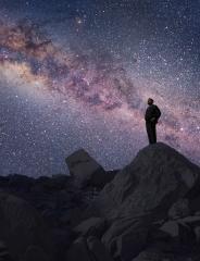 Cosmos: kaikki elämästä