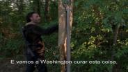 The Walking Dead T5 - Estreia