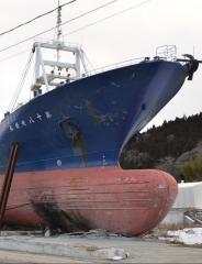 Contre vents et marées, une autre histoire du tsunami